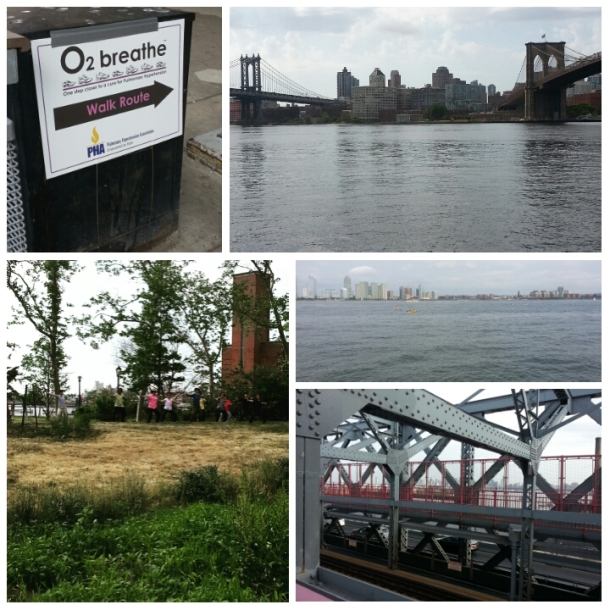 Plenty happening on the walk today, including charity events, Tai Chi, and kayaks in the Hudson.